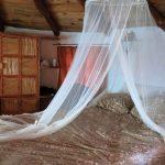 Bett 150x150 - Die Sierra Gorda - Das grüne Juwel im Herzen Mexikos