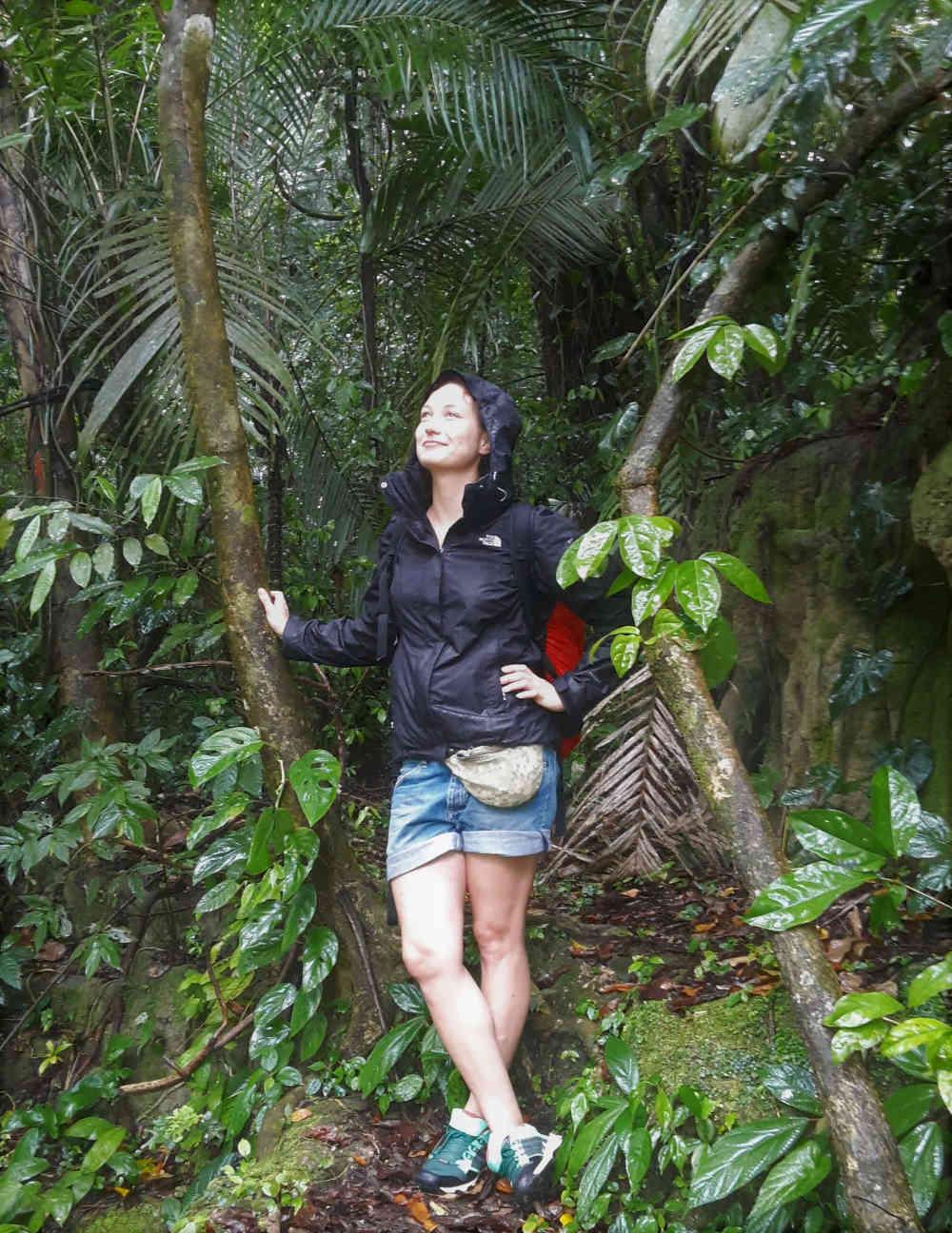 RegenwaldChiapas - Mexiko - Eins der schönsten Reiseländer überhaupt
