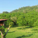 Orangenfeld web 150x150 - Veracruz - Auf den Spuren der Vanille in Papantla