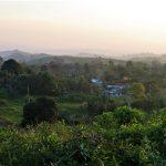 Papantla Landschaft web 150x150 - Veracruz - Auf den Spuren der Vanille in Papantla