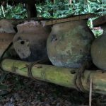 Xanath Bienen2 web 150x150 - Veracruz - Auf den Spuren der Vanille in Papantla