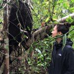 Xanath Termitennest web 150x150 - Veracruz - Auf den Spuren der Vanille in Papantla