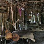 Xanath Totonakenhaus4 web 150x150 - Veracruz - Auf den Spuren der Vanille in Papantla