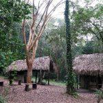 Xanath Totonakenhaus web 150x150 - Veracruz - Auf den Spuren der Vanille in Papantla
