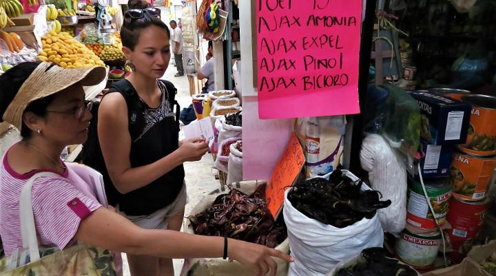 Claudia mercado - Backpacking Mexico - Planung, Vorbereitung, Organisation