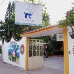Eingang 150x150 - Alebrijes aus Arrazola - Wo Träume Wirklichkeit werden