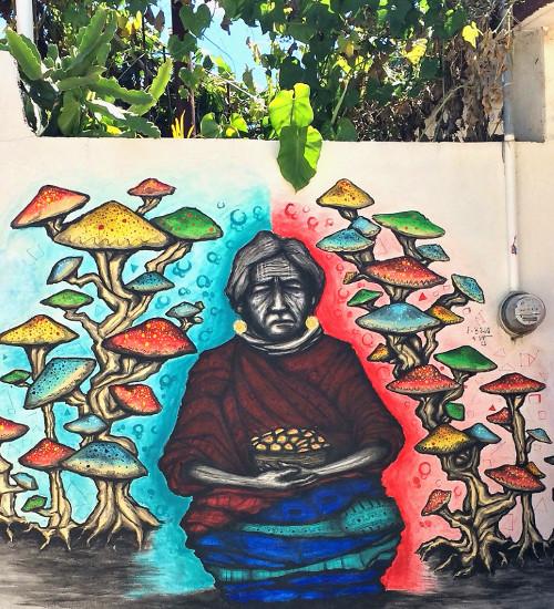Graffiti Arrazola Pilze - Alebrijes aus Arrazola - Wo Träume Wirklichkeit werden