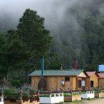 Cabanas2 blog 150x150 - San José del Pacifico - Wolken und Magic Mushrooms