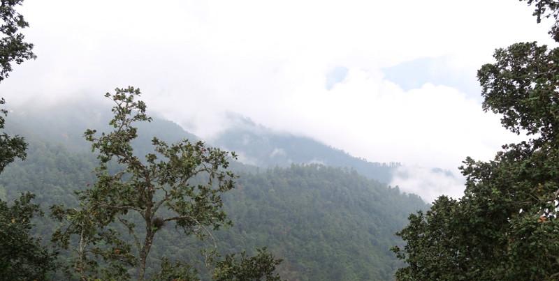 Wolken blog - San José del Pacifico - Wolken und Magic Mushrooms