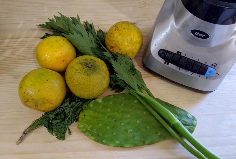 Jugo verde zutaten - Rezept Jugo Verde – Der gesündeste Smoothie Mexikos