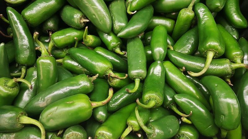 Jalapenos - Welche Zutaten du für eine authetische mexikanische Küche selbst anbauen kannst